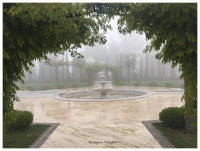 havuz-basi-40584