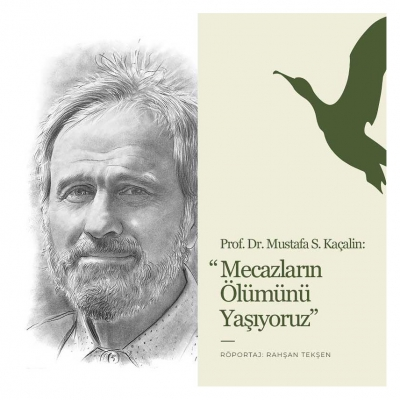 Prof. Dr. Mustafa S. Kaçalin